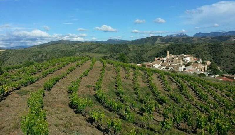 comprar-vins-negres-priorat-celler-clos93